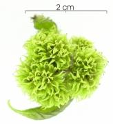 Tournefortia cuspidata flower-bud