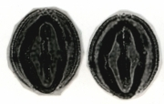Swartzia panamensis