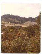 Landscape scene