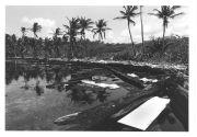Galeta oil spill