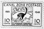 Gato Solo Stamp (Coati-Mundi)
