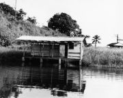 Frijoles Dock