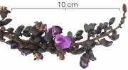 Dioclea wilsonii Inflorescence