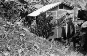 BCI house