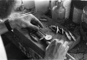 Measuring sardines
