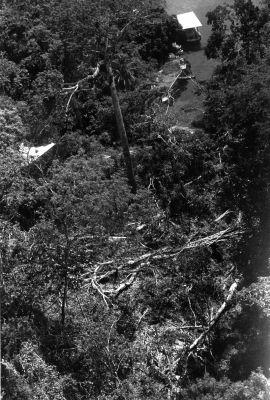 Blowdown of July 11, 1979