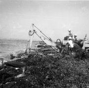 Galeta island oil spill