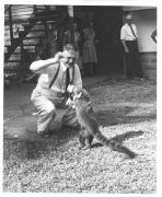 Dr. James Zetek feeding Coatimundi