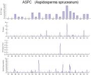 Aspidosperma spruceanum Timeseries