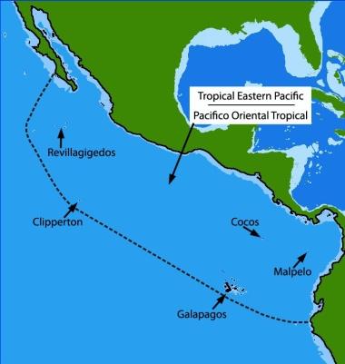 map of del mar california with Generalinfo on Playa Mismaloya moreover Scripps Clinic  scripps Clinic Del Mar additionally 550405846 together with Golfo De California Y Mar Caribe  C2 BFarrecifes De Coral En El Umbral De Su Extincion as well 83978.